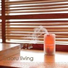 Caoru-living